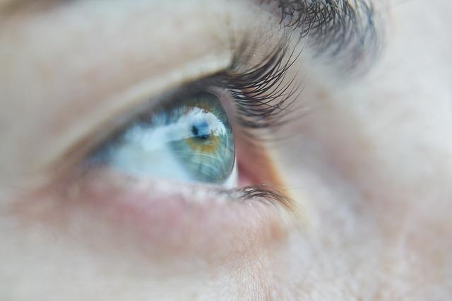 lidské oko